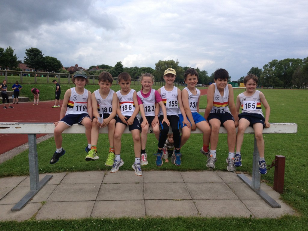 Junior Harriers